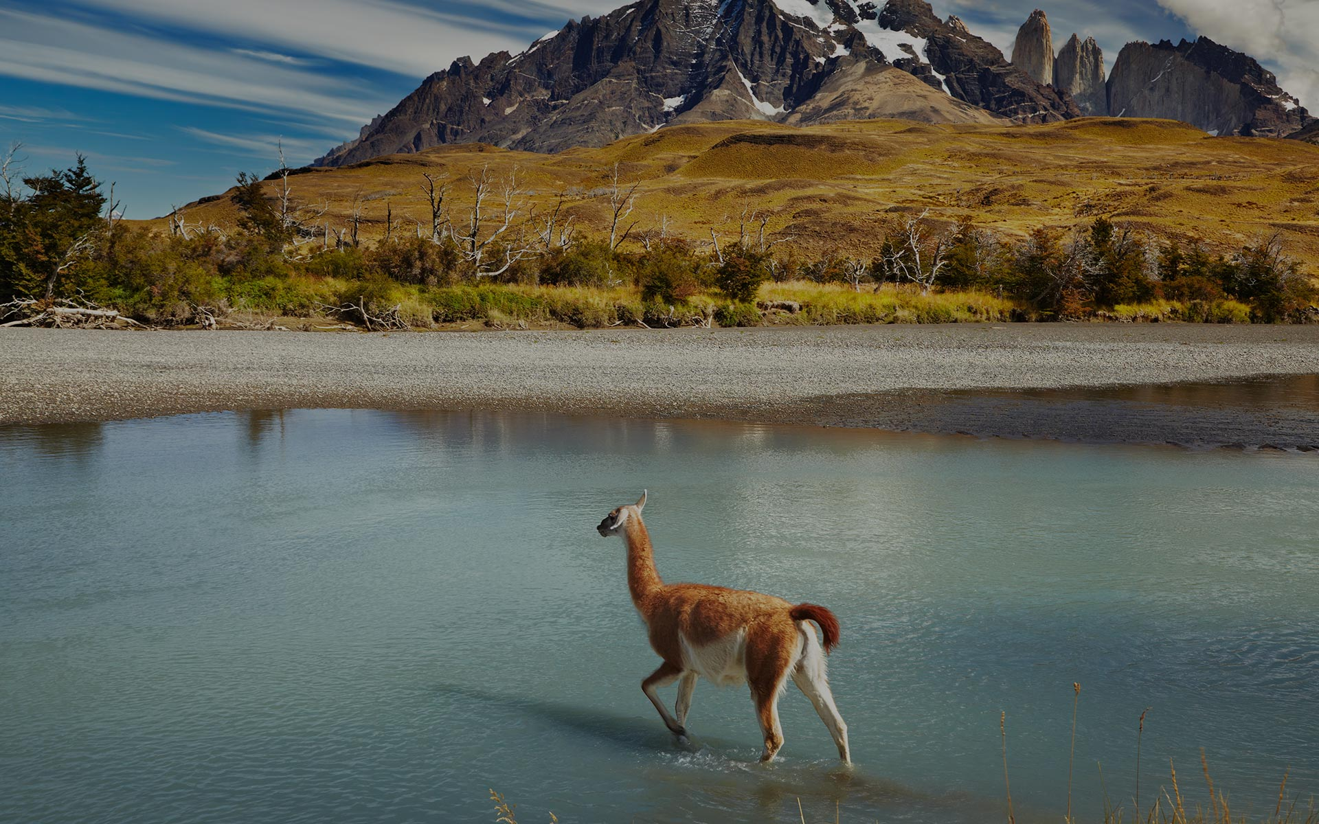 Explore South America under $1000